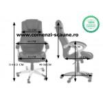 Scaune birou 223