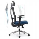 Scaun ergonomic multifunctional si elegant pe culoarea albastru cu negru-SYYT-9501