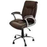 Scaune ergonomice 355
