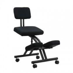 Scaune ergonomice 094