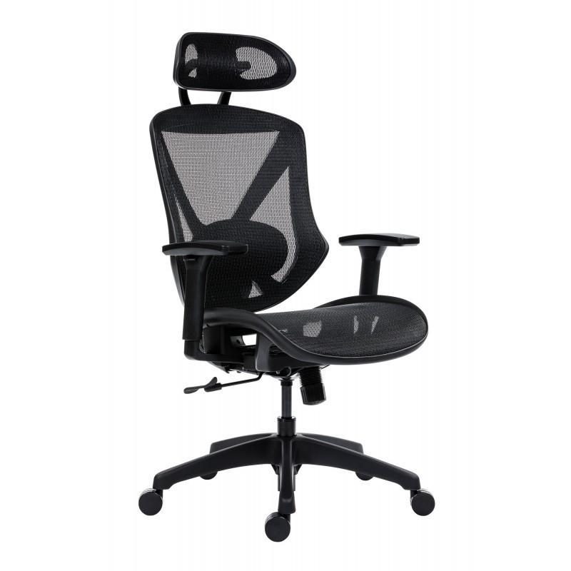 Scaun ergonomic AERO PRO flexibil și rezistent