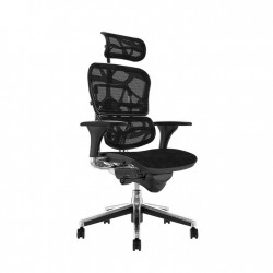 Scaune ergonomice Ergohuman V1