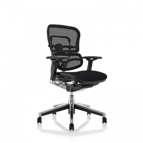 Scaune super ergonomice Ergohuman 1 mesh negru