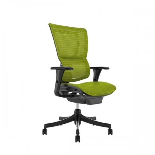 Scaun ergonomic rotativ PM verde