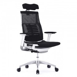 Scaun ergonomic elegant si performant POFIT BLACK