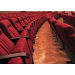 Scaune pentru sali de spectacole-Elegance