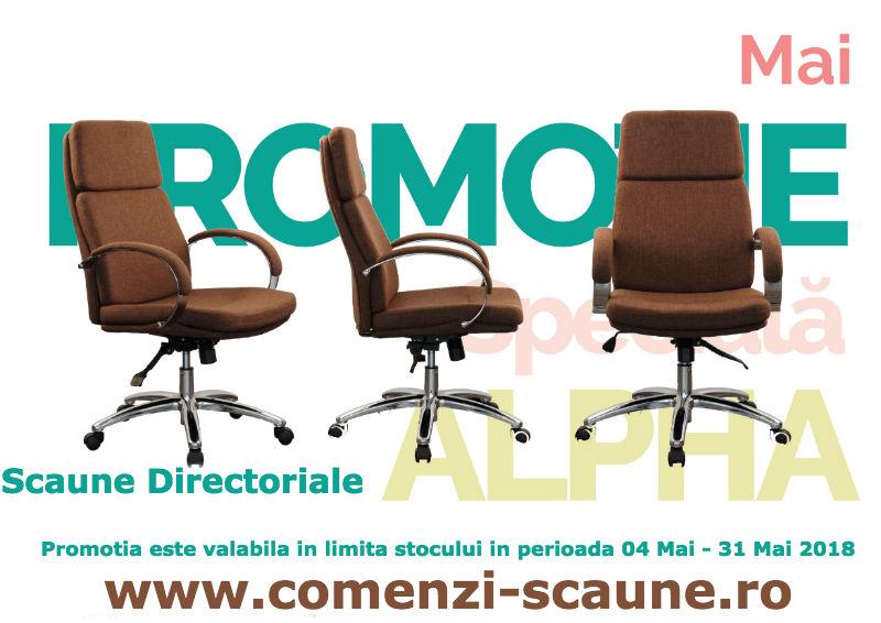 Oferta-scaune-directoriale-A-maro