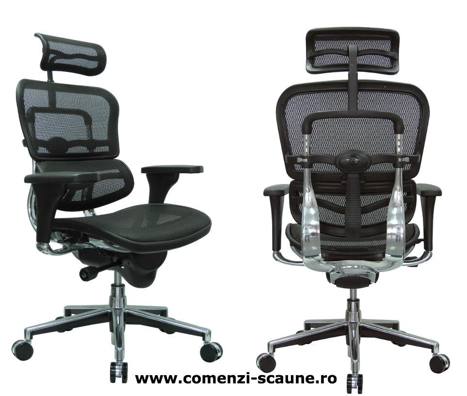 Scaune ergonomice profesionale Ergohuman Mesh