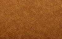 3812-BISCUIT