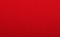 4874-CALIPSO